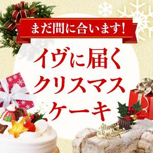 「クリスマスイヴにまだ間に合うクリスマスケーキ (161221)」 Yahoo!ショッピングで開催中